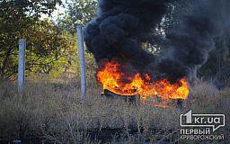 Спасатели просят криворожан не поджигать сухостой