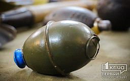 Криворожане нашли в лесополосе опасные боеприпасы