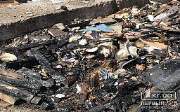 Из-за неосторожного обращения с огнем в Кривом Роге загорелась стихийная свалка