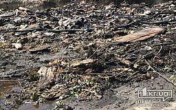 В Кривом Роге неосторожное обращение с огнем привело к пожару на стихийной свалке