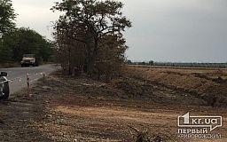 В Кривом Роге вырубают деревья, строят непонятные теплицы, а полиция едет на вызов 3 часа