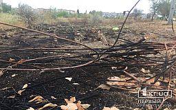 Почему в Кривом Роге горит сухая трава, - мнение горожан