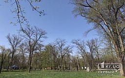 Криворожских чиновников и депутатов не пустили в парк Мершавцева из-за следственных действий