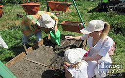 Городской огород в Кривом Роге высаживали взрослые и дети