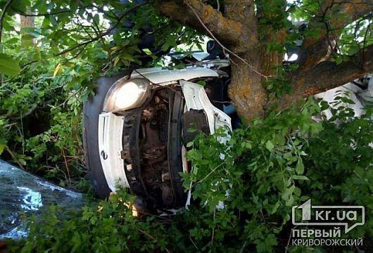 Пятеро криворожан погибли во время ДТП в Николаевской области