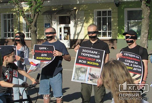 Криворожские зоозащитники вышли на акцию протеста