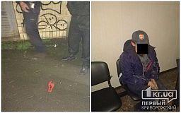 Детский сад, кабели и секатор: криворожанина задержала полиция охраны