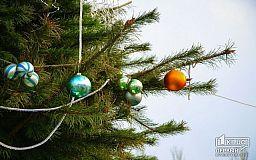 Конкурс на лучшую новогоднюю елку в Кривом Роге (ОПРОС)
