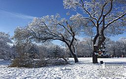 В Кривом Роге на смену снегопаду пришел веткопад