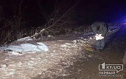 В Кривом Роге авто сбило насмерть пешехода, водитель скрылся с места происшествия