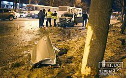 Пассажира, пострадавшего в ДТП в Кривом Роге, доставали из авто реаниматологи
