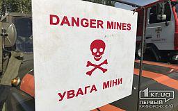 Собирая грибы в лесах, украинцы находят боеприпасы, - спасатели