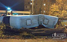 В Кривом Роге водитель микробуса вылетел на тротуар и снес дерево