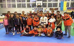 Криворожские каратисты получили кубок Всеукраинских соревнований