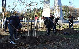 У Кривому Розі висадили Алею пам'яті на честь загиблих воїнів