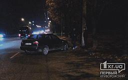 Вечером в Кривом Роге автомобиль сбил пешехода