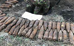 Недалеко от Кривого Рога обнаружили более 100 взрывоопасных снарядов