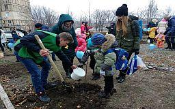От старших - младшим: возле гимназии №91 появилась кленовая роща