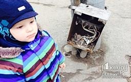 «Свидетели событий»: ребенок чуть не лишился пальцев