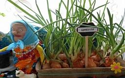 В криворожском детском саду воспитанники оборудовали детский огород