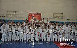 Криворожские каратисты отлично показали себя на соревнованиях в Херсоне