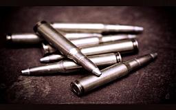 Криворожские правоохранители изъяли у местного жителя гранаты, охотничье ружье и патроны