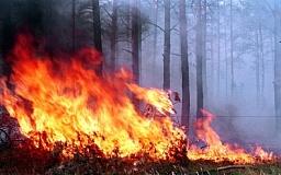 Что делать при лесном пожаре (ИНФОГРАФИКА)
