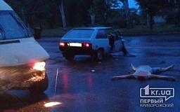 Серьезное ДТП в Кривом Роге: Маршрутка столкнулась с «Таврией». Есть пострадавшие