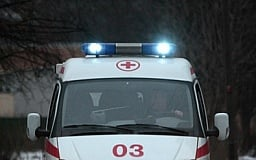 В Днепропетровской области бешеная собака покусала 14 человек
