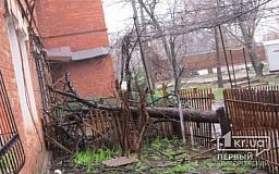 Непогода в Кривом Роге: Сильный ветер валит деревья на дома и автомобили (ОБНОВЛЕНО)