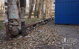 «Свидетели событий»: Жизнь на ЮГОКе: неизолированная теплотрасса, деревья-гиганты и мусорник рядом с детсадом