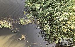 В реке под Кривым Рогом был обнаружен труп неопознанного мужчины