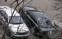 В Кривом Роге упавшая ветка разбила заднее стекло припаркованной Audi