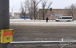 Ответственность за совершение ДТП должен нести пешеход, нарушивший ПДД, - петиция
