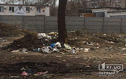 Сотрудники пиццерии в Кривом Роге жалуются на стихийную свалку рядом с их заведением