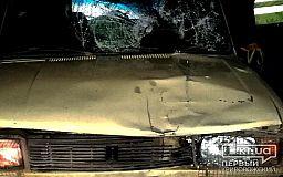 Полиция разыскивает очевидцев ночного ДТП под Кривым Рогом