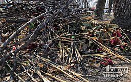 В Кривом Роге цветы со стеллы Героев выкинули под дерево и накрыли ветками