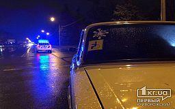 В Кривом Роге автомобиль сбил женщину с двумя детьми