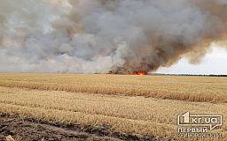Достаточно искры, чтобы случился масштабный пожар, - спасатели