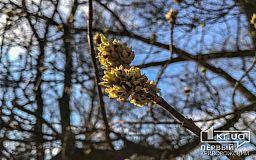 Погода в Кривом Роге и гороскоп для горожан 27 марта