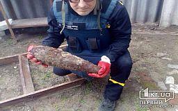 Криворожские спасатели обезвредили мину, найденную в лесу