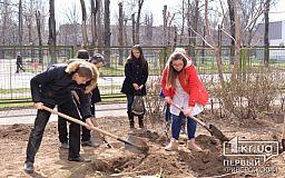 Посади дерево своими руками: криворожский педагогический университет присоединился к экологической акции