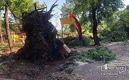 На детскую площадку в Кривом Роге рухнуло дерево