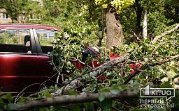Более 40 автомобилей в Кривом Роге повреждено в результате падения деревьев
