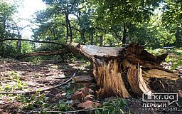 Результат разрушительной силы стихии в Кривом Роге - дайджест