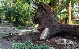 Криворожанам, потерпевшим убытки во время урагана, выдают запасы стройматериалов из резерва