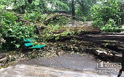 В Кривом Роге частично переходят на уборку парков и скверов от веток и деревьев, рухнувших во время бури