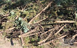933 абонента вынуждены жить вторую неделю без света после урагана в Кривом Роге