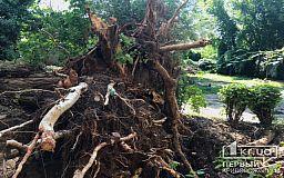 Криворожанам, пострадавшим от бури, выплатят до 10 тысяч гривен