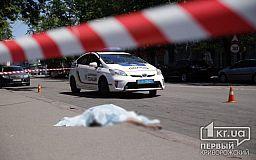 Криворожанин умер в результате ДТП с маршруткой
